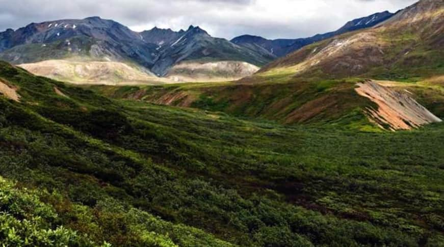 Denali National Park is home to Denali (formerly Mount McKinley), the highest peak in North America
