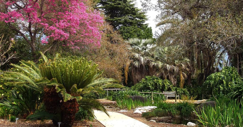 Los Angeles County Arboretum and Botanic Garden - Staycation Los Angeles: 11 Amazing Ideas For 2020