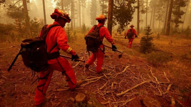 Three Injured as California's Second-Largest Wildfire Grows to Near 500,000 Acres 1
